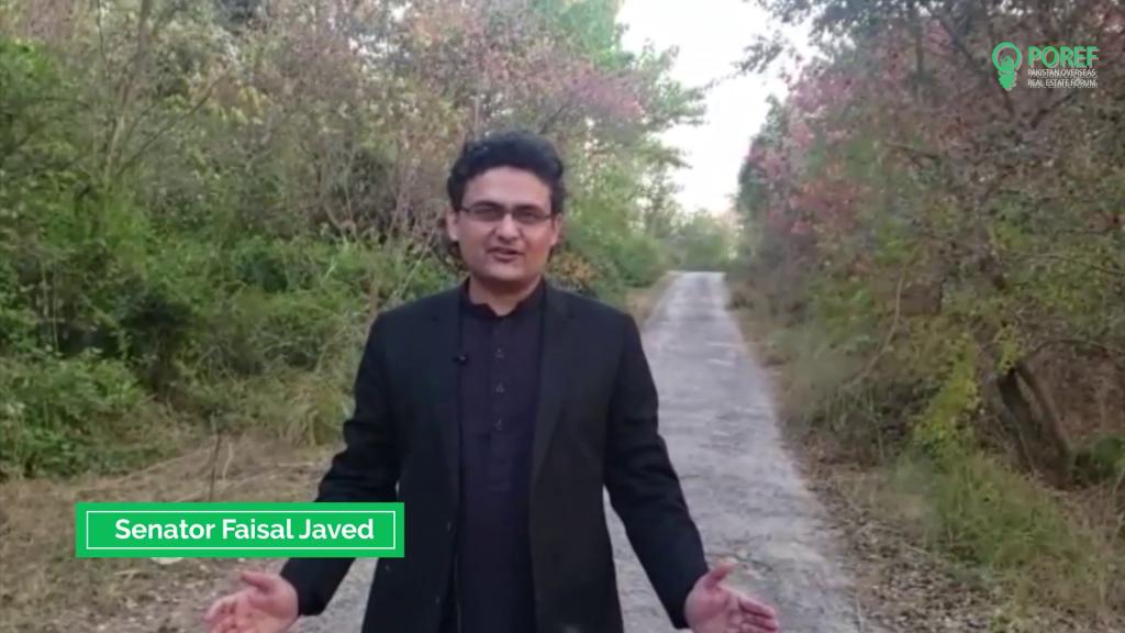 Faisal Javed Khan, Member of the Senate of Pakistan
